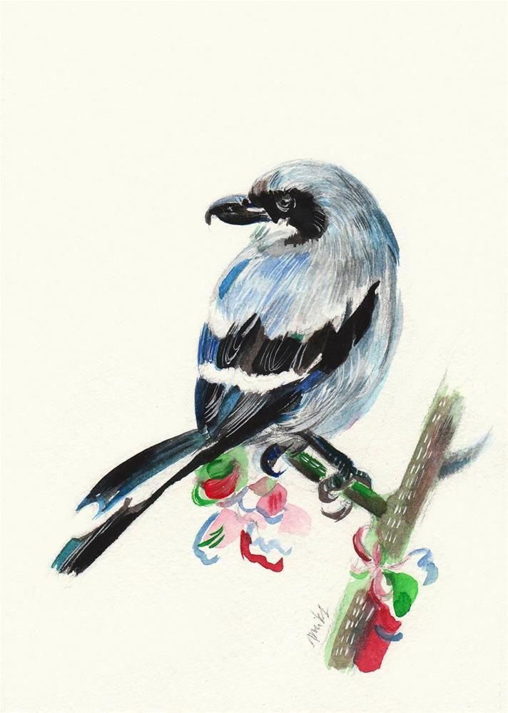 """Southern Grey Shrike"" original fine art by Anna  Fine Art"
