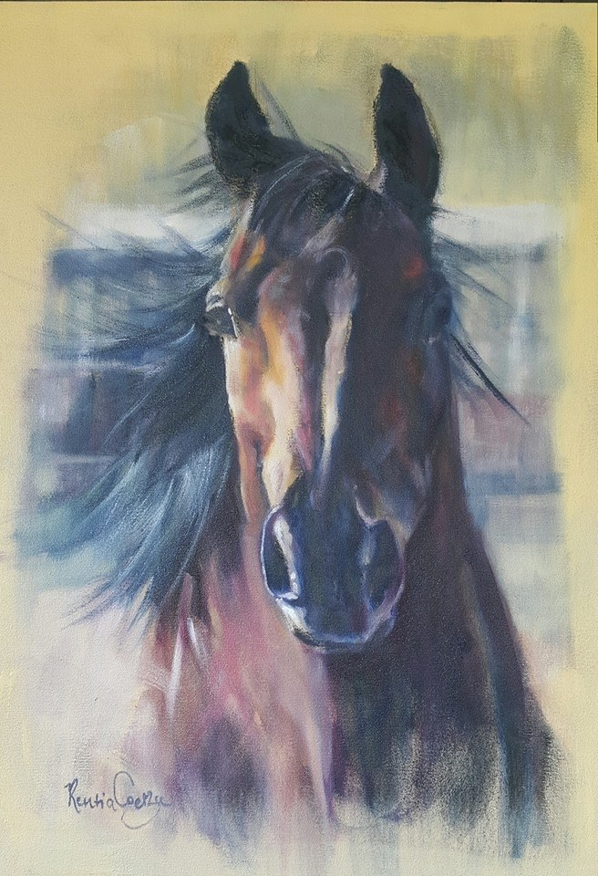 """Equine wonder"" original fine art by Rentia Coetzee"