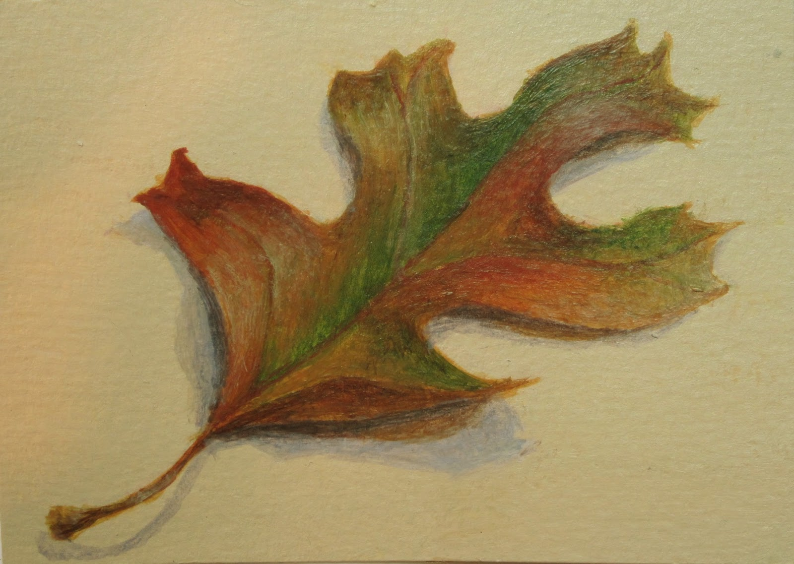 """Touch of Fall"" original fine art by Debbie Shirley"