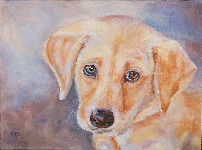 """Dixie"" original fine art by Carol DeMumbrum"