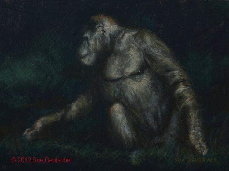 Gorrila original fine art by Sue Deutscher