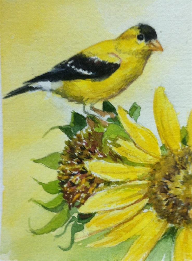 """Yellow Goldfinch on Sunflower"" original fine art by Kathryn Kittell"