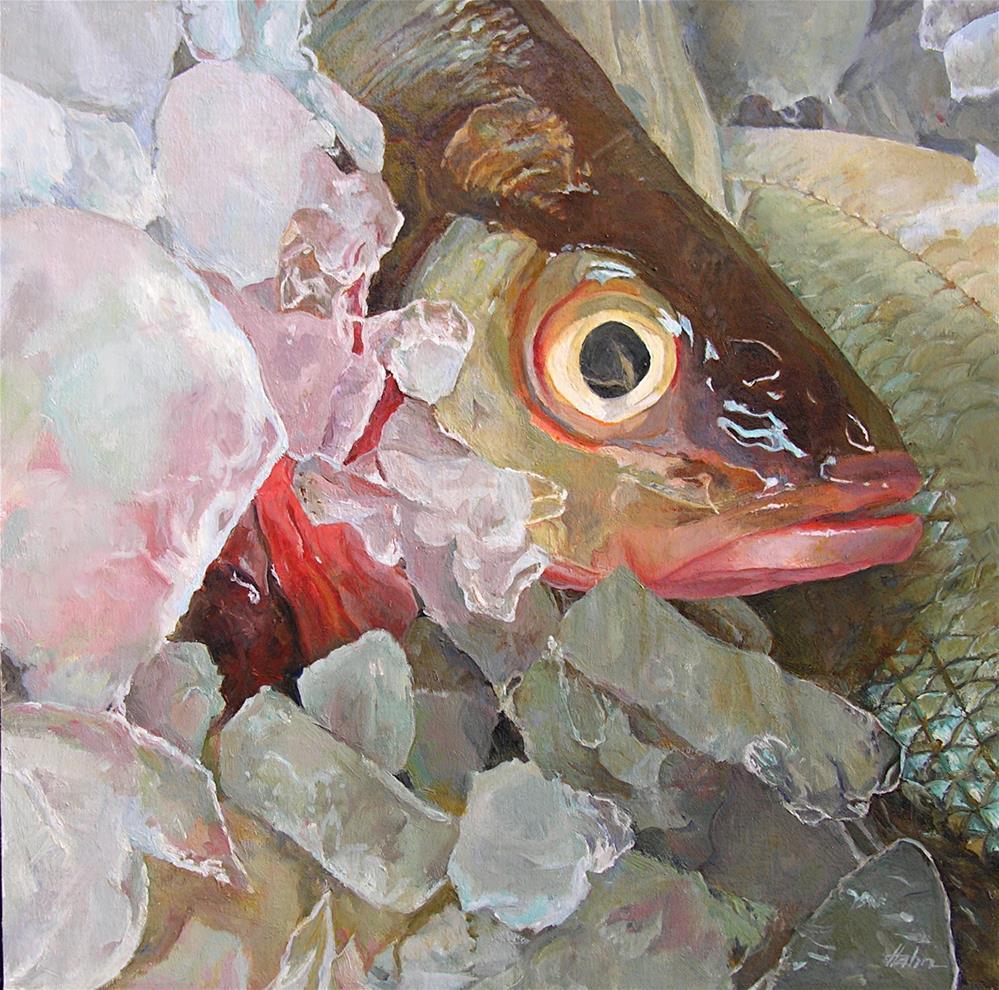 """Fish Eye"" original fine art by Elaine Hahn"