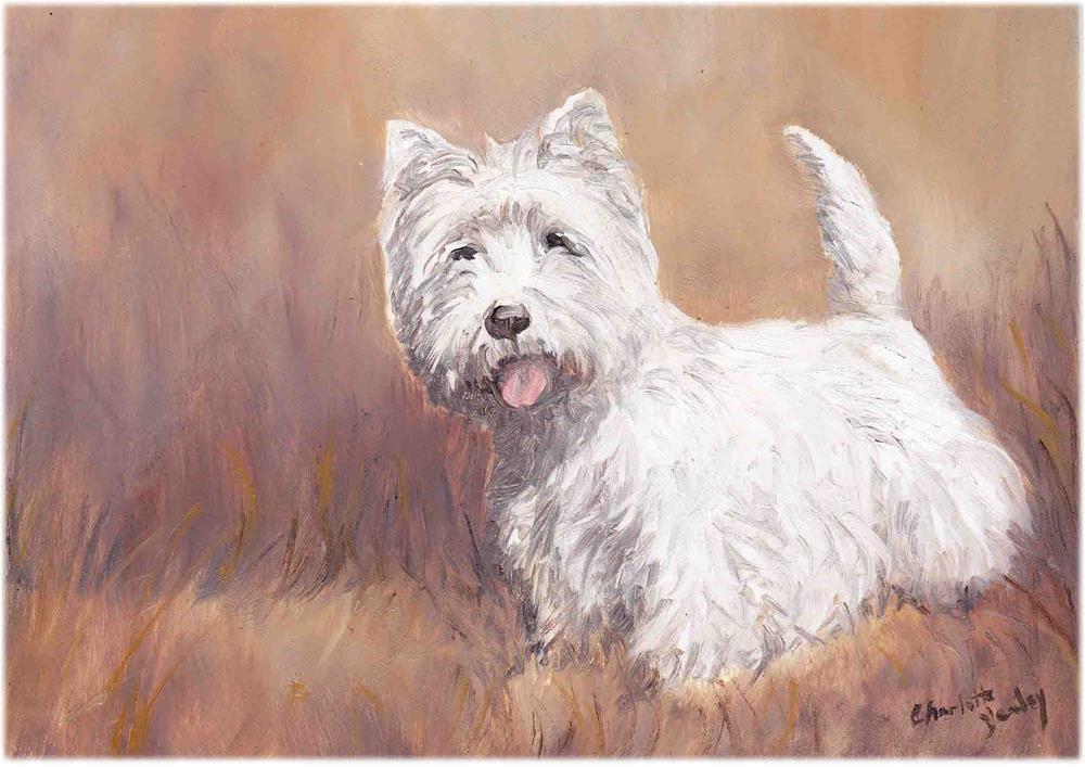 """West Highland Terrier"" original fine art by Charlotte Yealey"