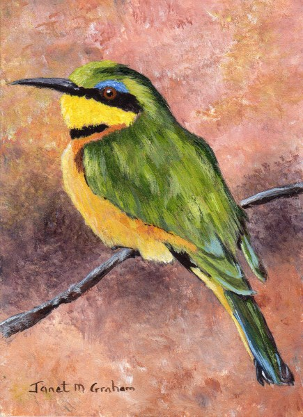 """""""Little Bee Eater ACEO"""" original fine art by Janet Graham"""