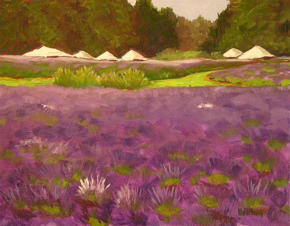 """Lavender Festival"" original fine art by Mary McInnis"