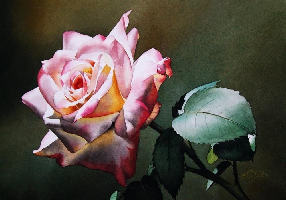 """Twilight Rose"" original fine art by Jacqueline Gnott, TWSA, WHS"