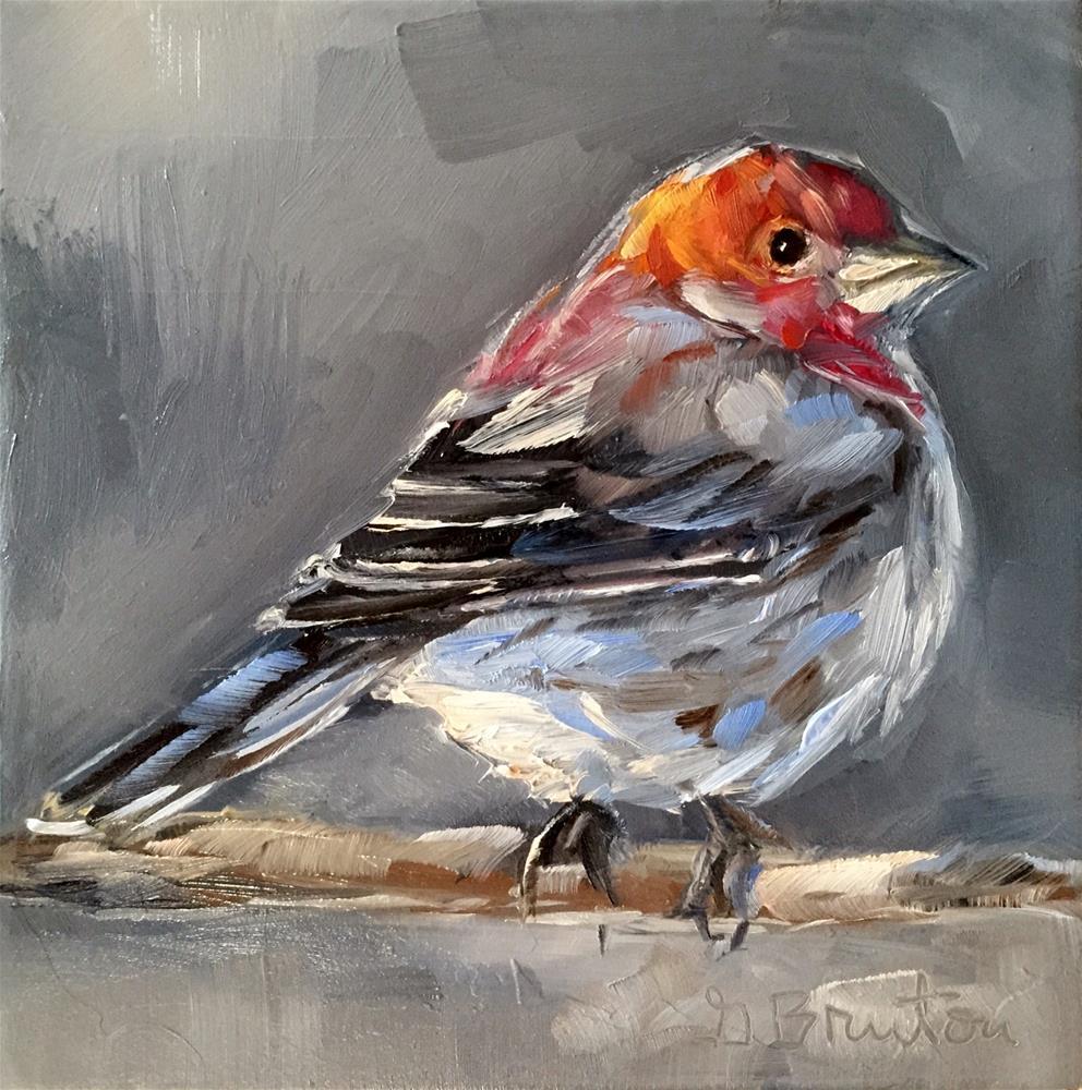 """House Finch"" original fine art by Gary Bruton"