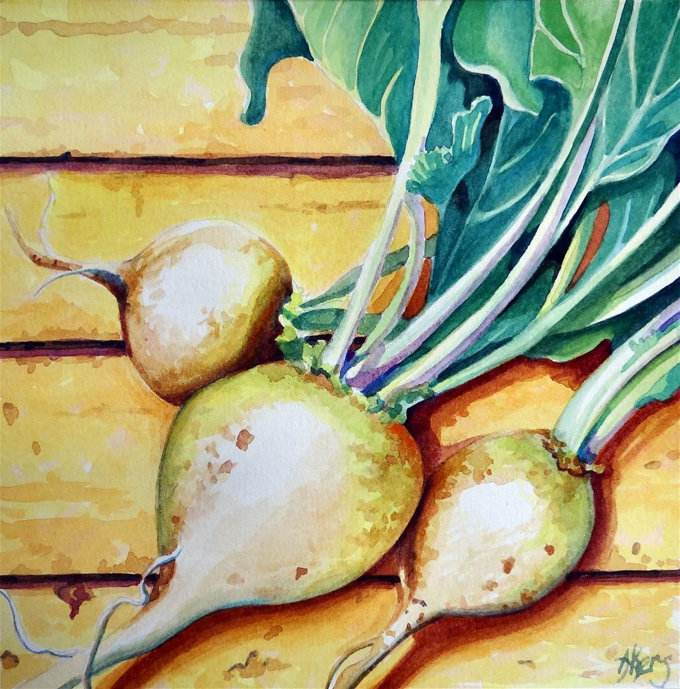 """White Turnips- Interpretive Realism Vegetable Still Life"" original fine art by Alida Akers"