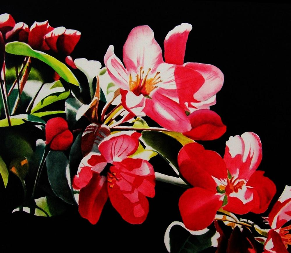 """Pink Apple Blossoms"" original fine art by Jacqueline Gnott, whs"