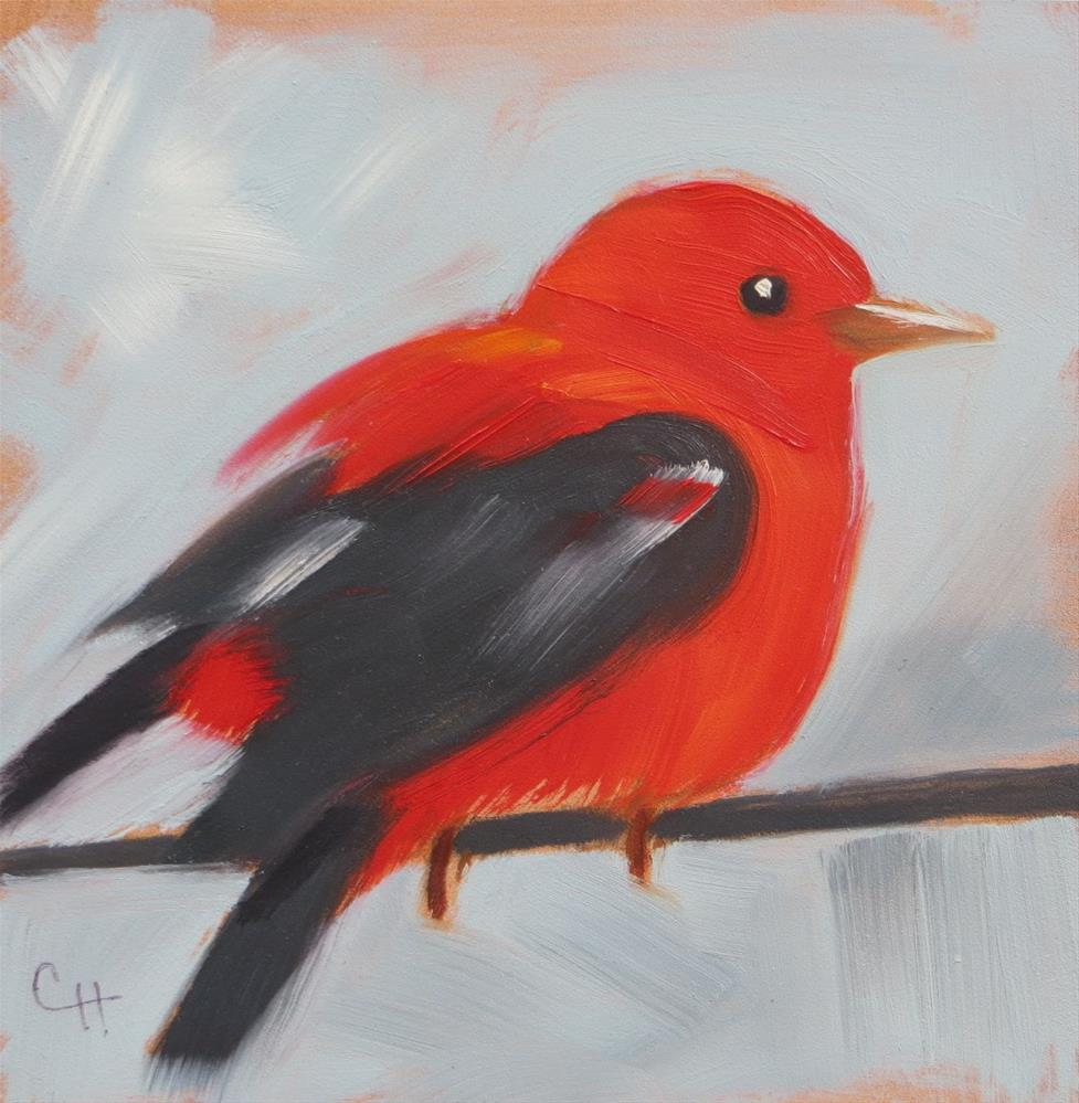 """Scarlet Tanager no. 2"" original fine art by Claire Henning"