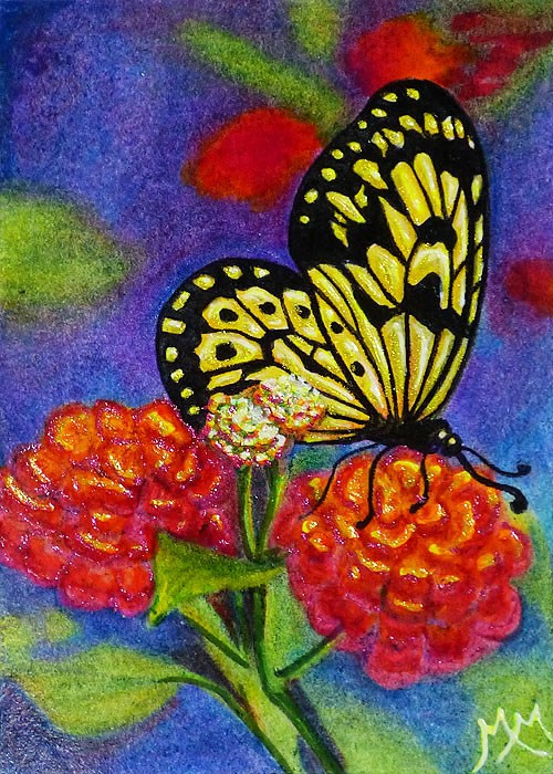 """Butterfly Summer"" original fine art by Monique Morin Matson"