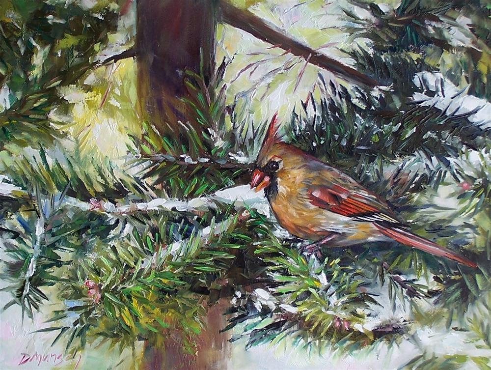 """Cardinal in the Pines"" original fine art by Donna Munsch"