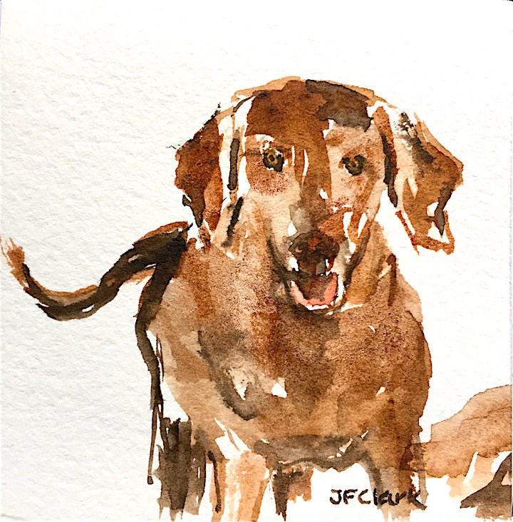 """Wag the Dog"" original fine art by Judith Freeman Clark"