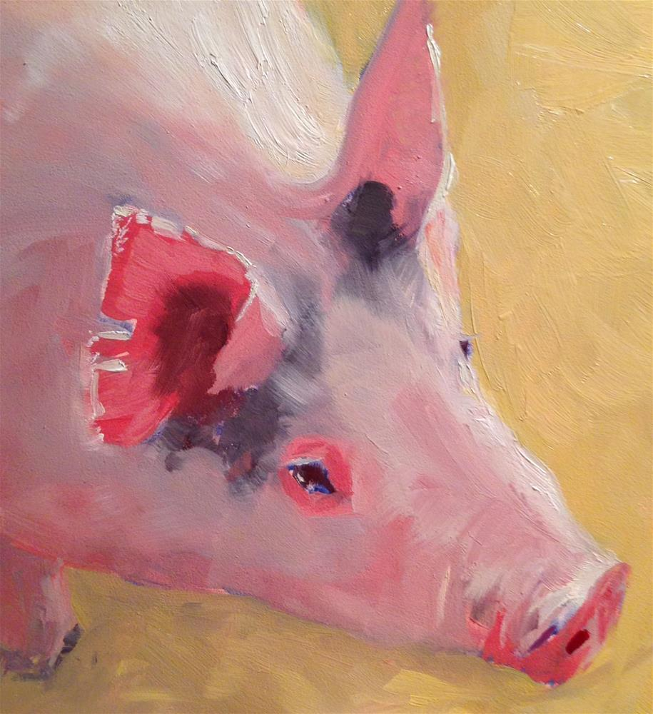 """#20 morning light on pig"" original fine art by Patty Voje"