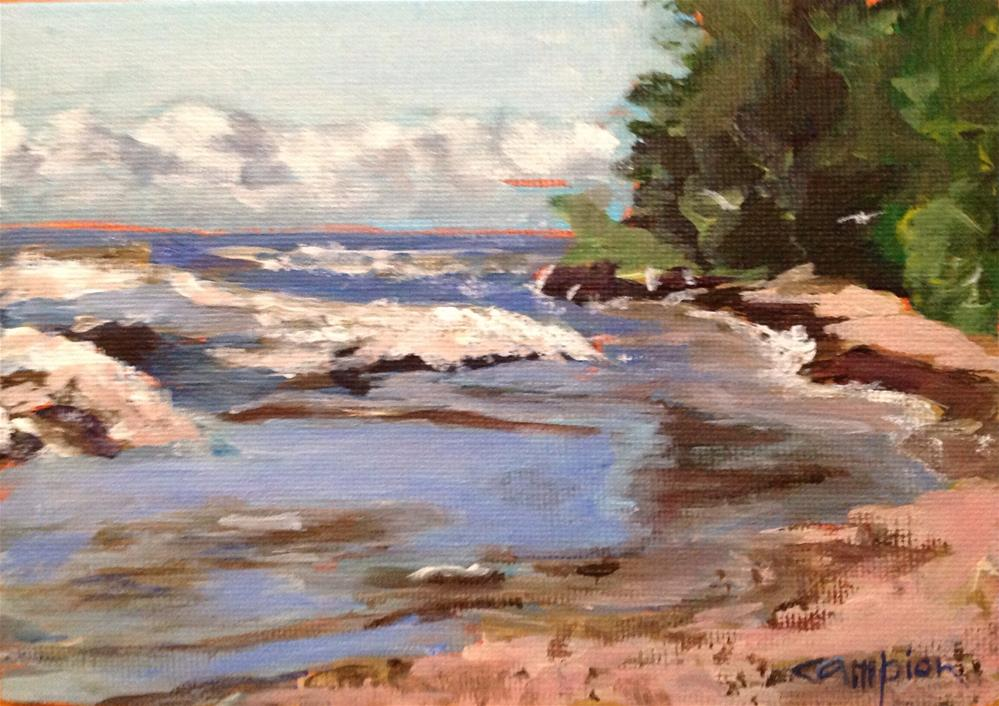 """189 Lake Michigan, Atwater Beach"" original fine art by Diane Campion"