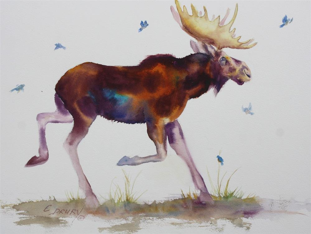 """Moose on the Loose"" original fine art by Colleen Drury"