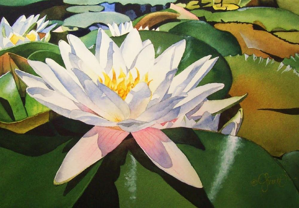 """White Waterlily"" original fine art by Jacqueline Gnott, TWSA, WHS"