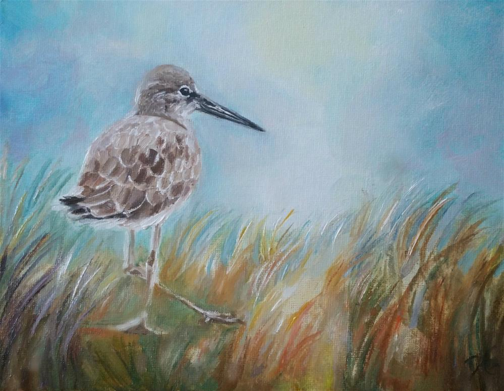 """Beach Bird"" original fine art by Dana C"
