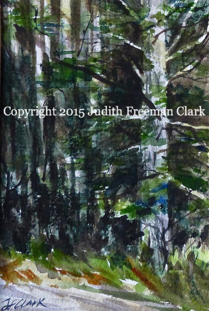"""Into the Woods"" original fine art by Judith Freeman Clark"