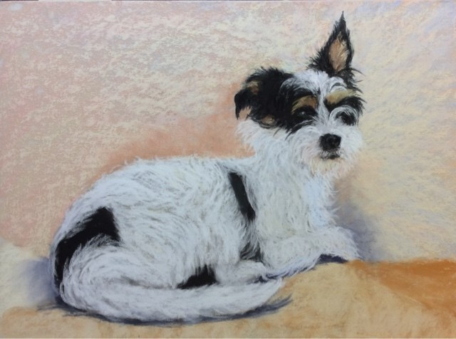 """BANDIT"" original fine art by Marti Walker"