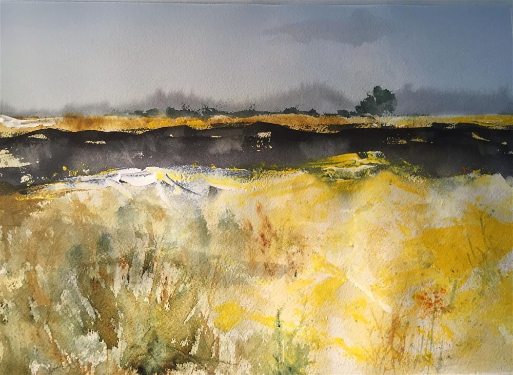 """""""AGRICULTURAL AREA LLOBREGAT RIVER DELTA"""" original fine art by Ferran Llagostera"""