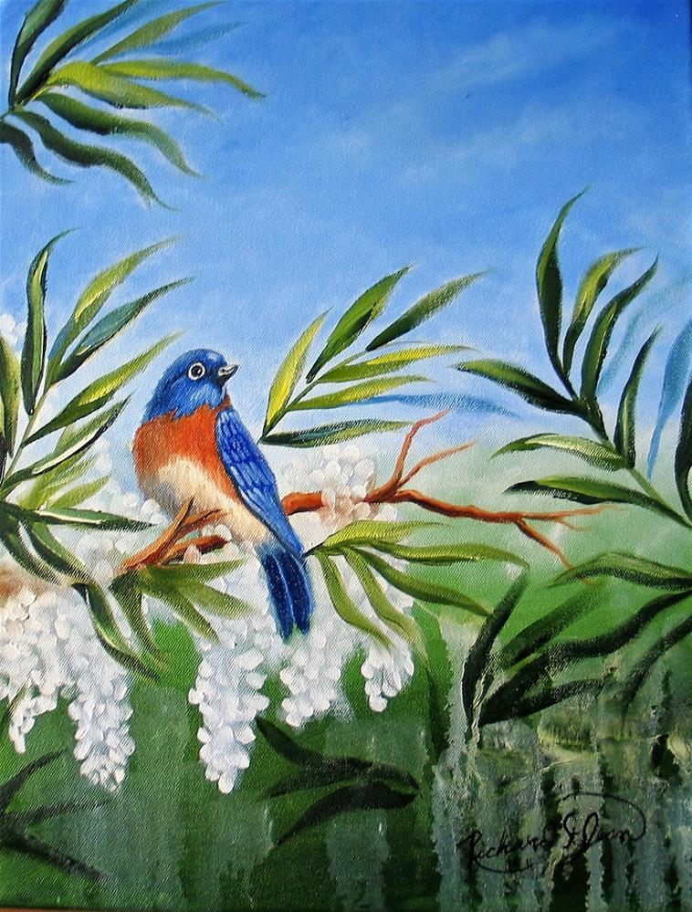 """Bluebird with Wisteria"" original fine art by Richard St.Jean"