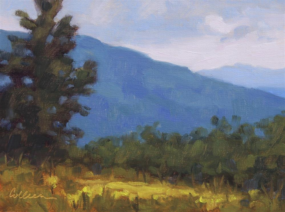 """Skyline Drive Overlook #1"" original fine art by Colleen Parker"