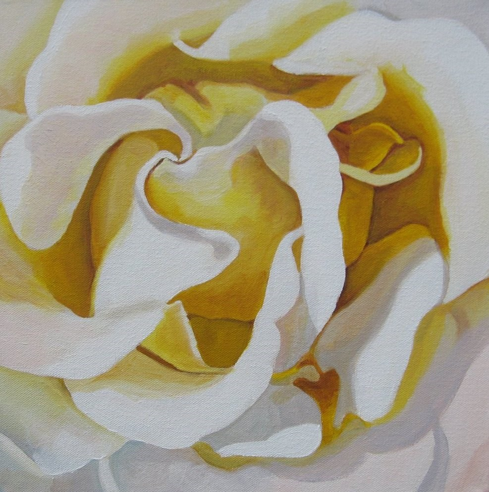 """White Beauty"" original fine art by Lisa Wiertel"