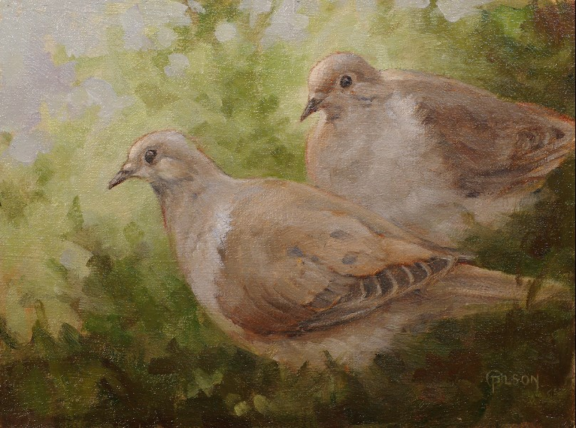 """doves"" original fine art by Priscilla Olson"