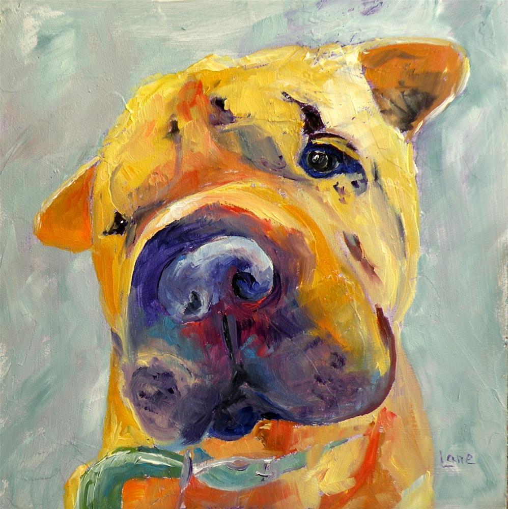 """DUDLEY 10/100 OF 100 PET PORTRAITS IN 100 DAYS © SAUNDRA LANE GALLOWAY"" original fine art by Saundra Lane Galloway"