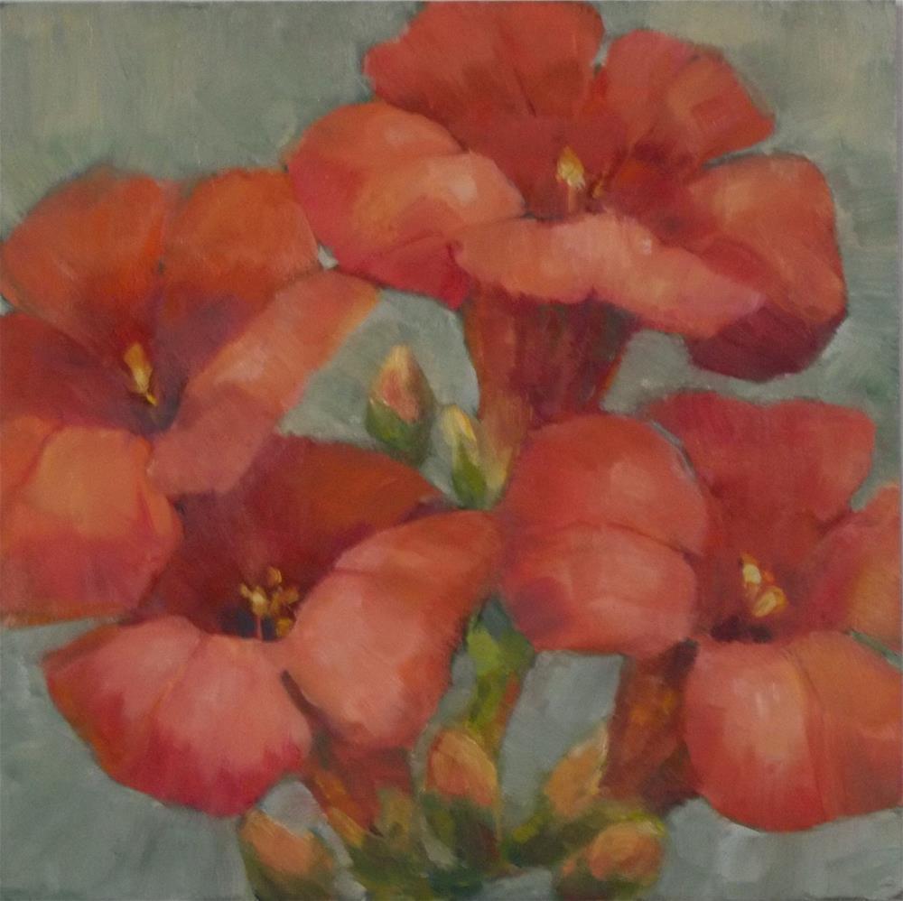 """Trumpet Vine Blossoms"" original fine art by Nancy  Spinadel"