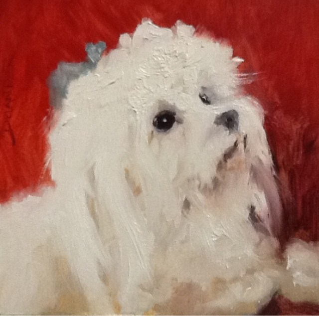 """Mandy Sue, Animal Portrait Study"" original fine art by Diana Delander"