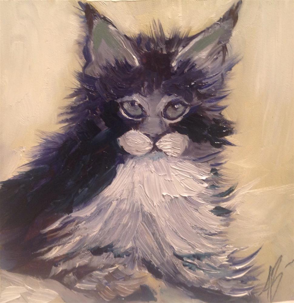 """Coon Cat"" original fine art by Annette Balesteri"