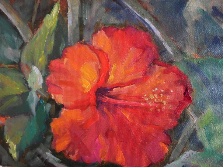 """Original Red Hibiscus Oil Painting,  Floral Painting,  Small Oil Painting, Daily Painting, 6x8"" original fine art by Carol Schiff"