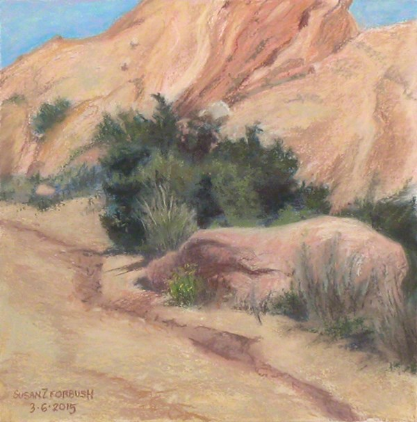 """Vasquez Shrub"" original fine art by Susan Z. Forbush"