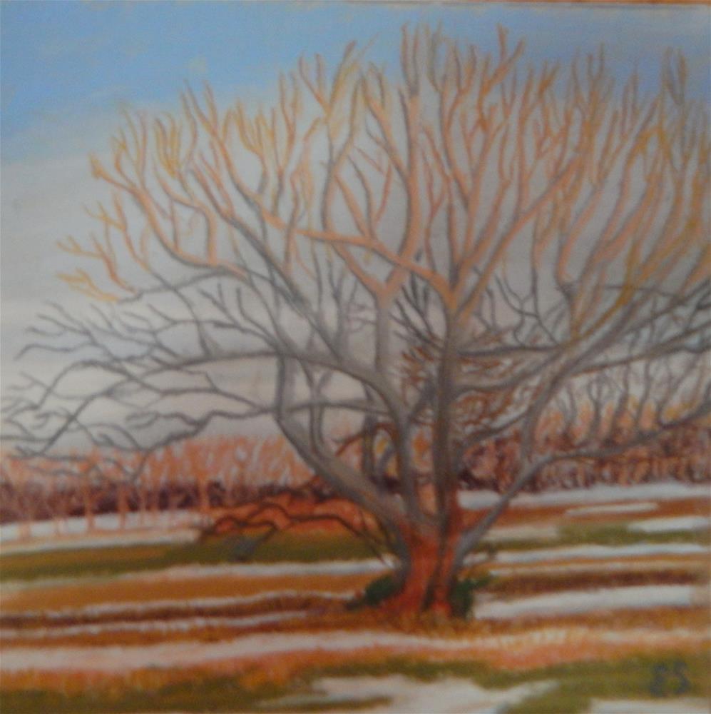 """""""Sunsetting Between Snowstorms"""" original fine art by Elaine Shortall"""