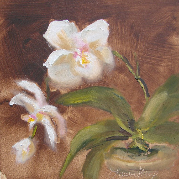 """Dorothy's Orchid - 394"" original fine art by Laura  Buxo"