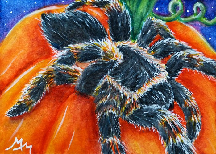 """Spider & Pumpkin"" original fine art by Monique Morin Matson"