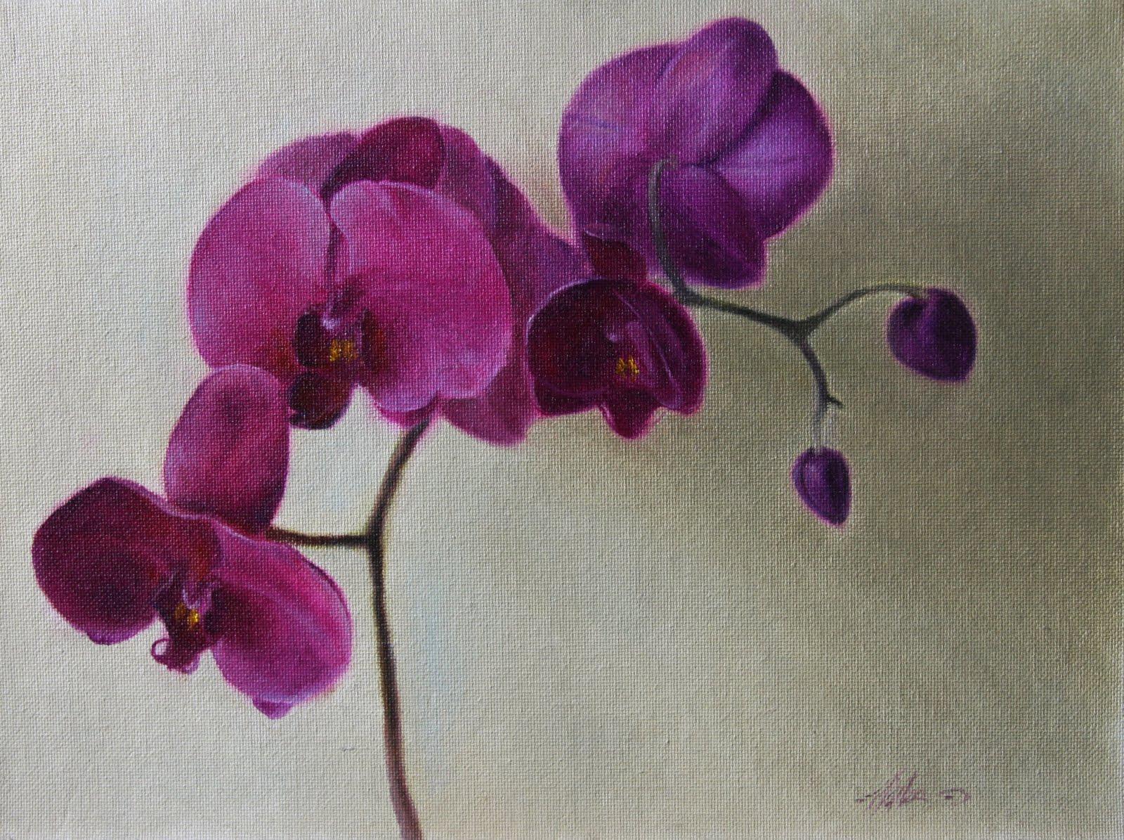 """""""Fuchsia Orchids"""" original fine art by Jonathan Aller"""