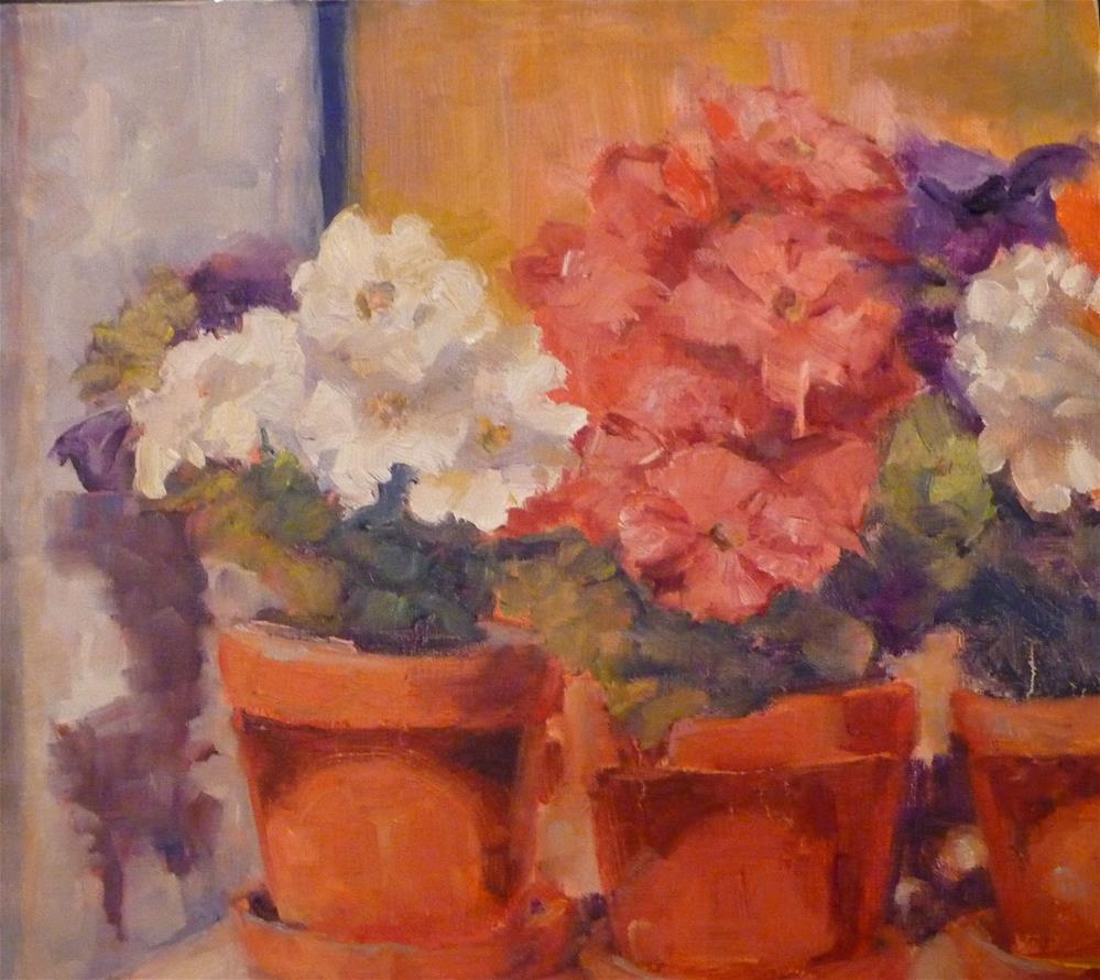 """Petunias"" original fine art by Carol Josefiak"