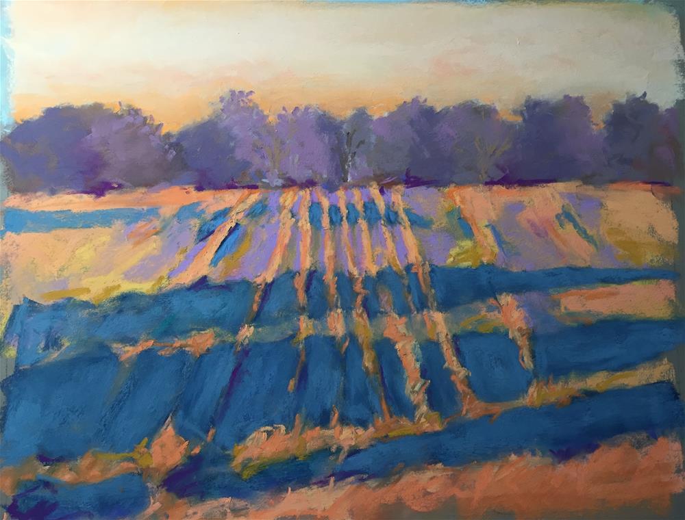 """Long Shadows"" original fine art by Sandi Miller"