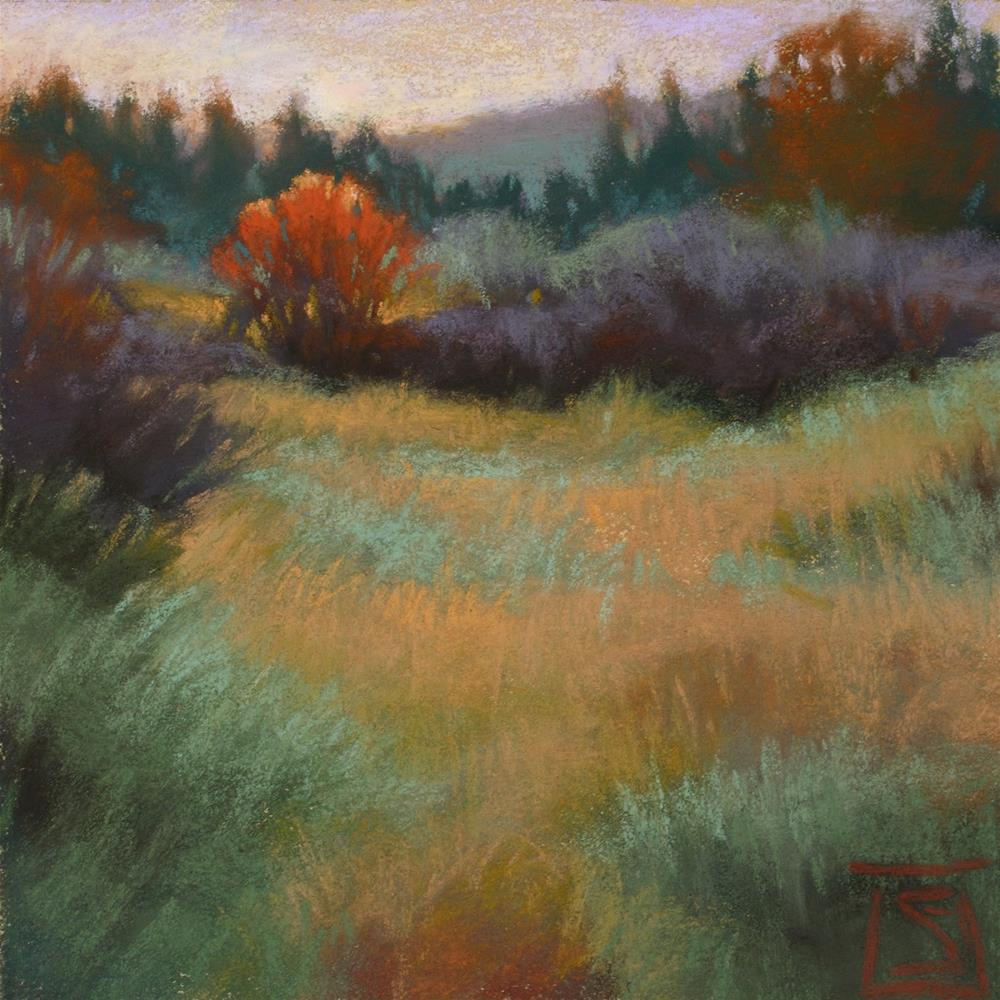 """Frosted Field"" original fine art by Sheila Evans"