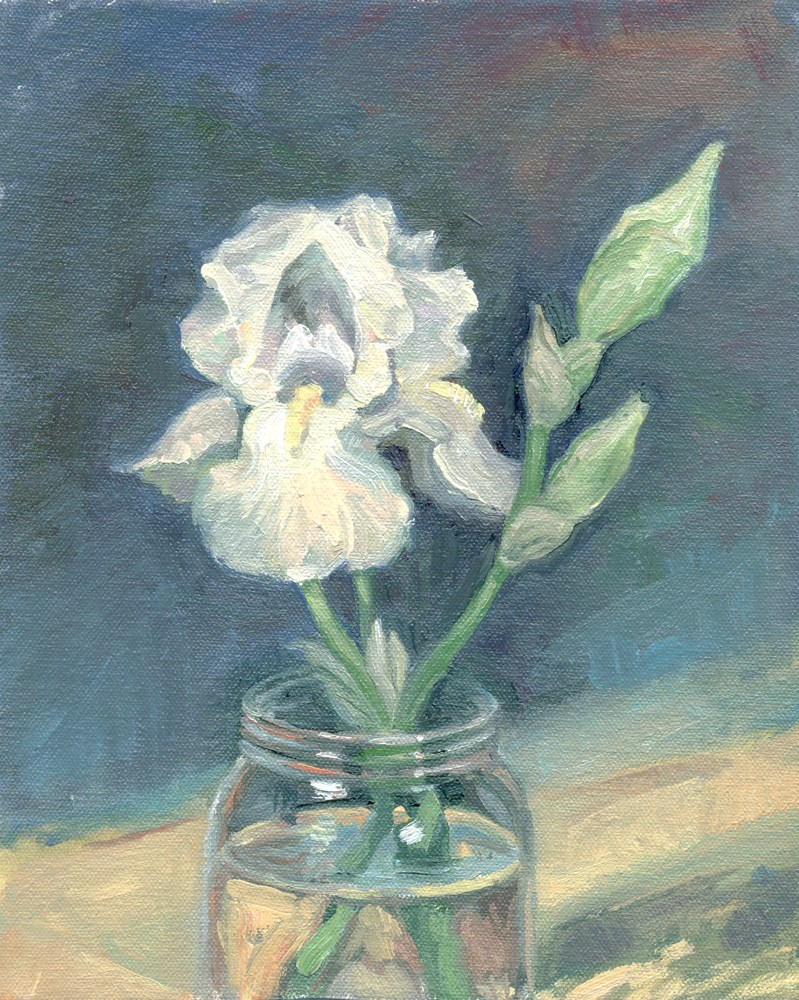 """White Iris"" original fine art by Kath Reilly"