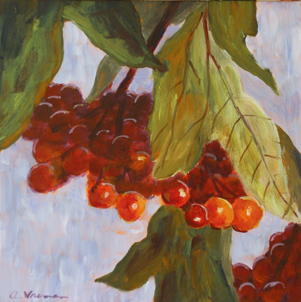 """High Bush Cranberries"" original fine art by Anna Vreman"
