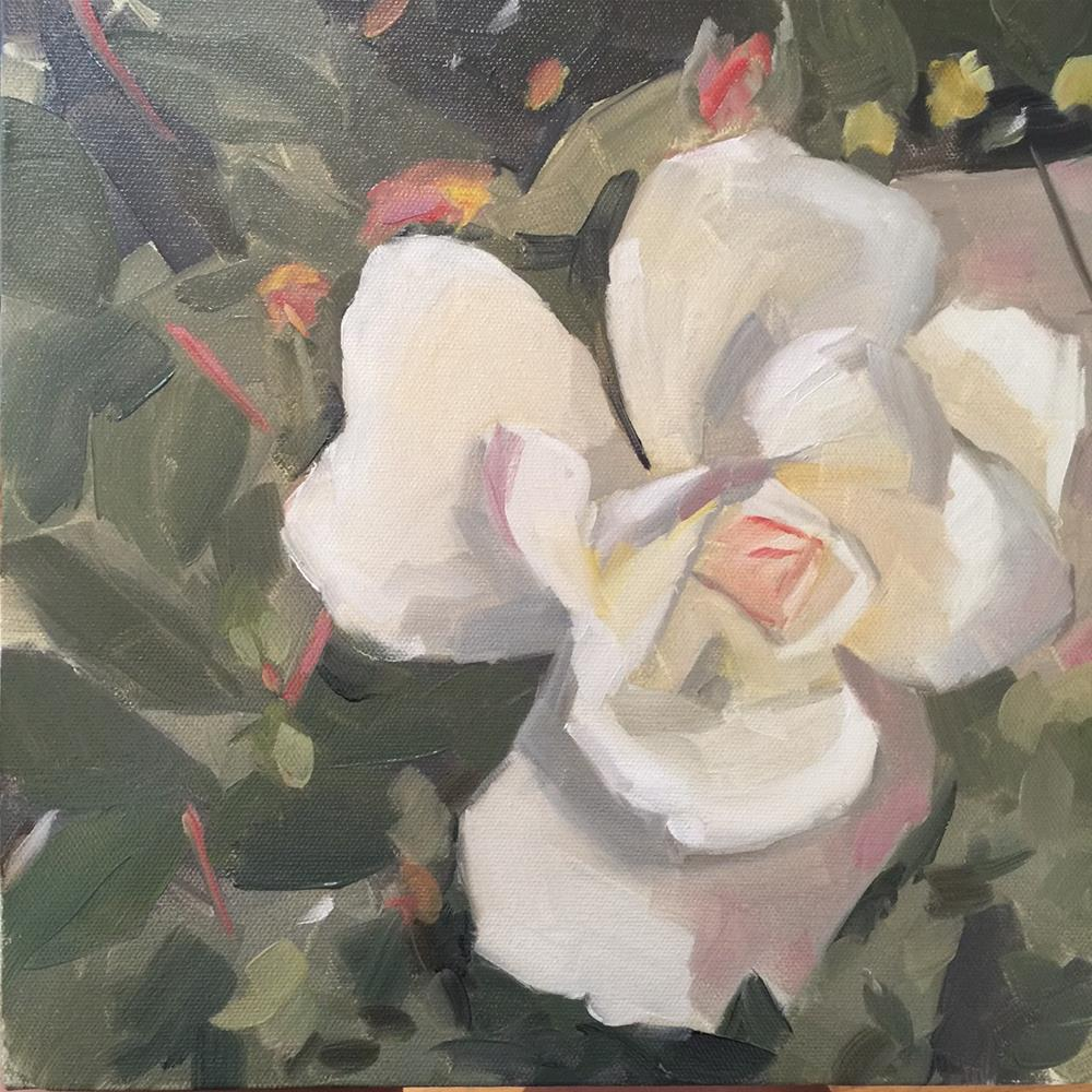 """286 White Rose"" original fine art by Jenny Doh"
