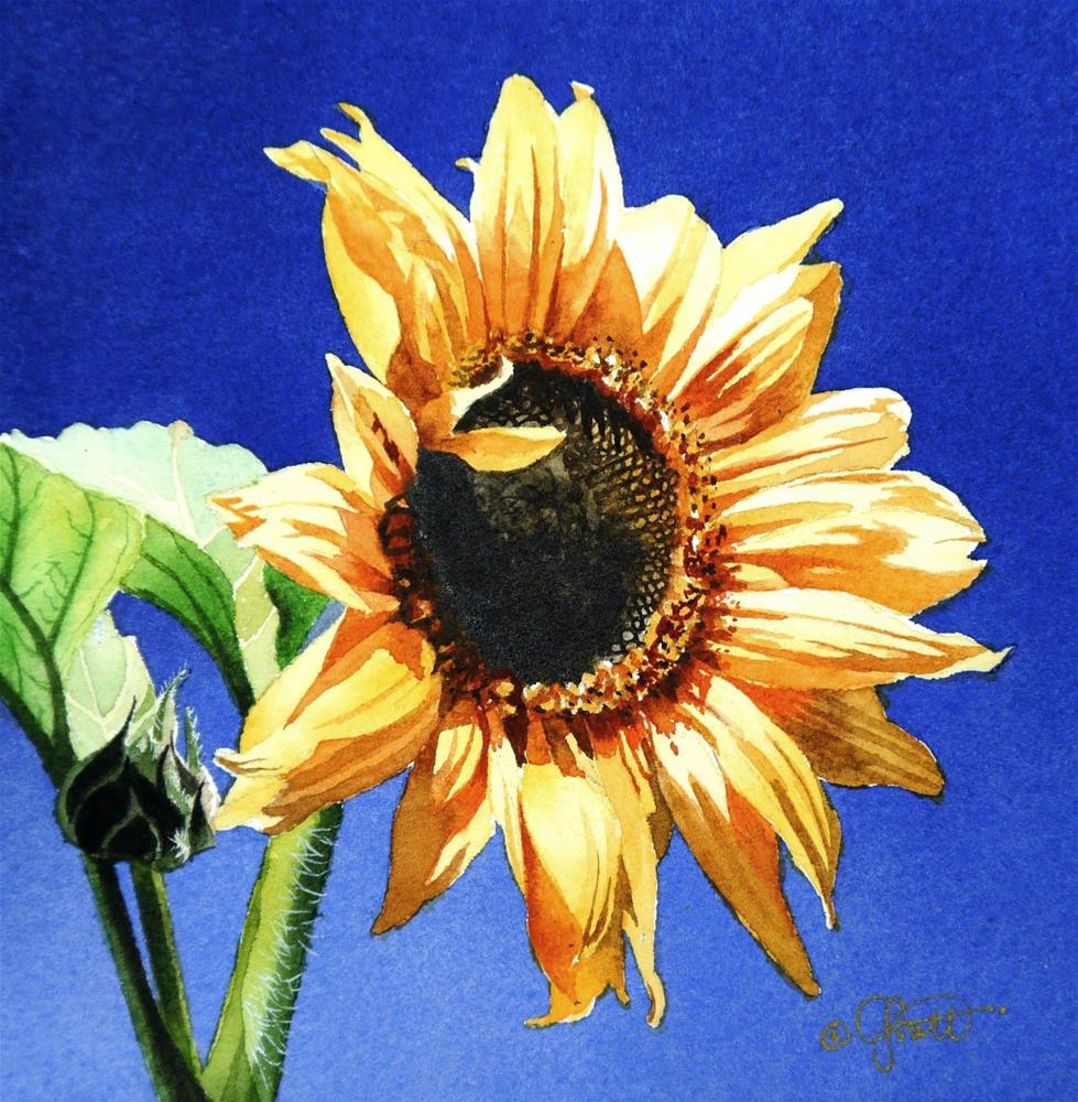 """Sunflower, New Watercolor & New Video"" original fine art by Jacqueline Gnott, whs"