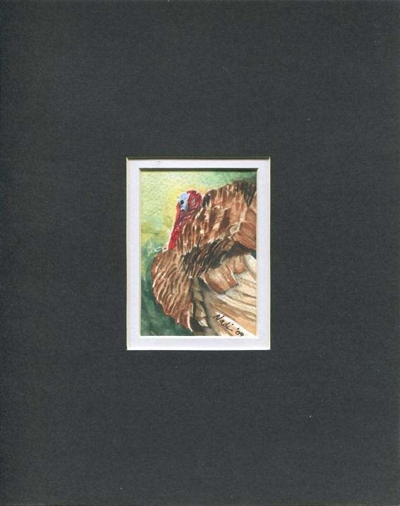 """Turkey B"" original fine art by Nadi Spencer"