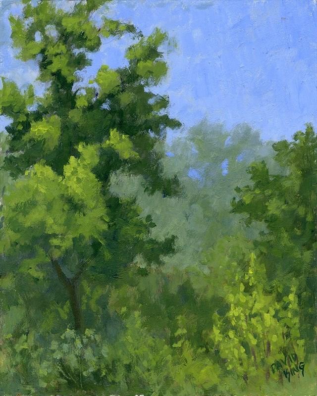 """Spring Foliage"" original fine art by David King"
