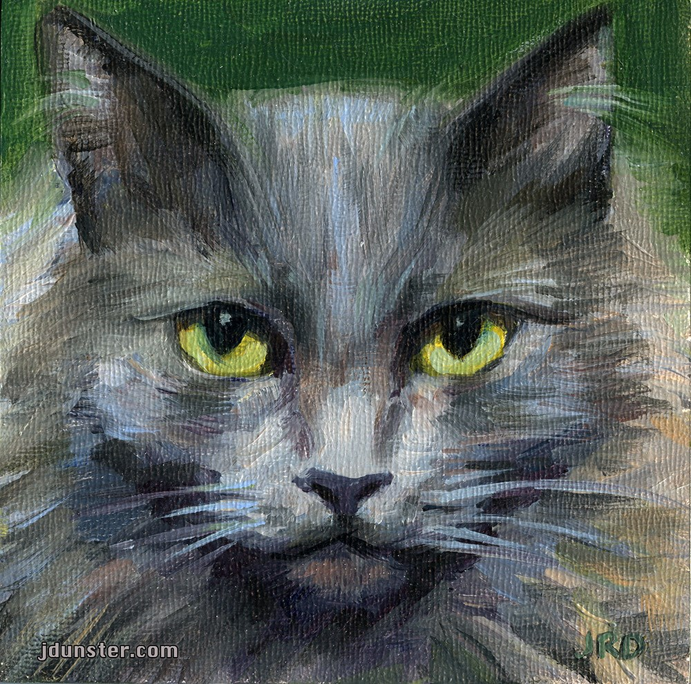 """GREY & GROUCHY CAT HEAD"" original fine art by J. Dunster"